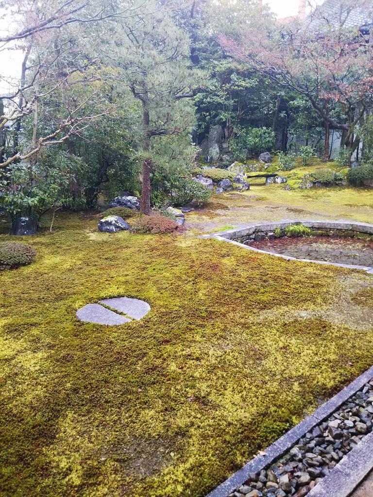巴の庭 (1).jpg