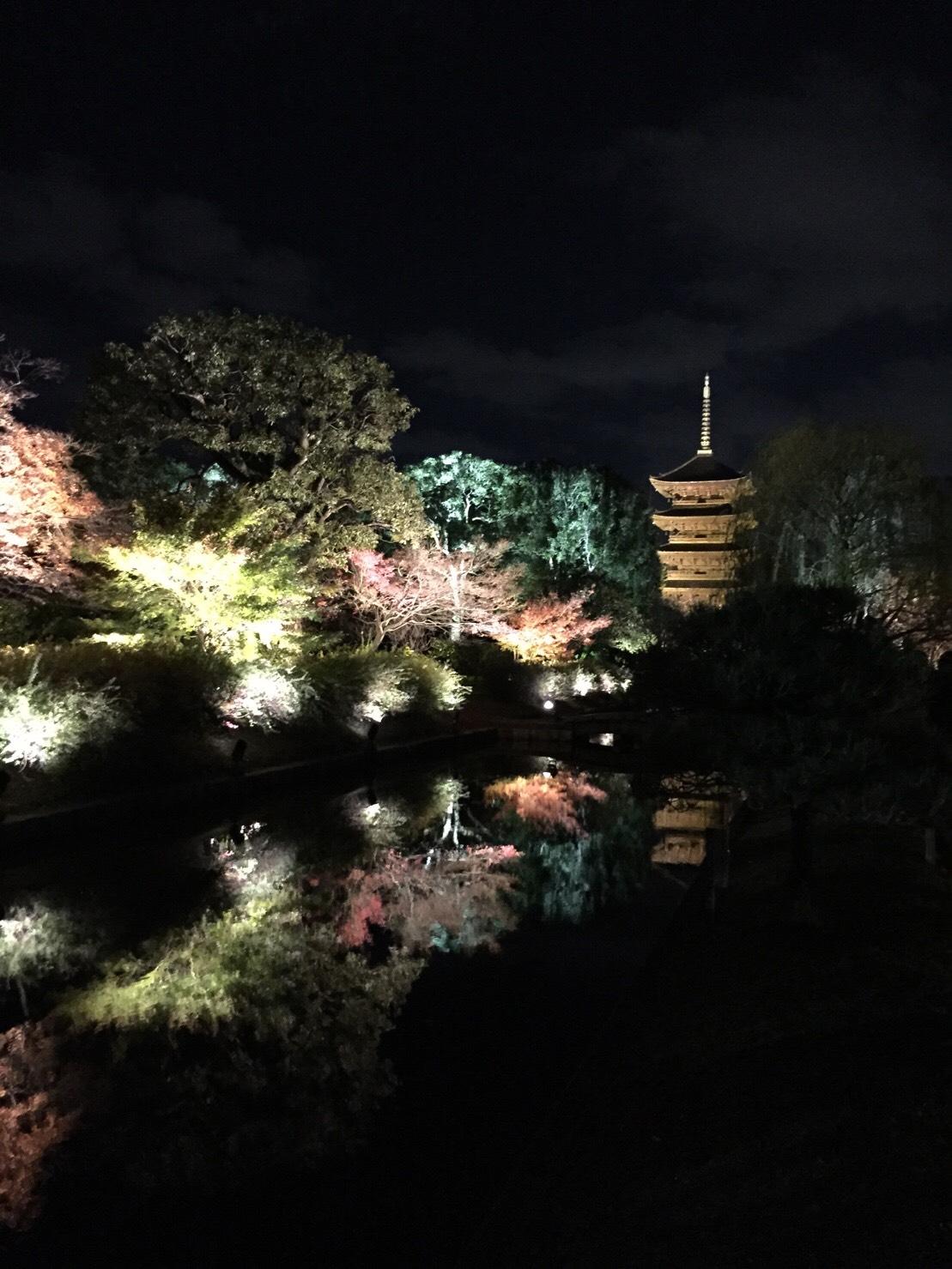 東寺ライト2 (1).jpg