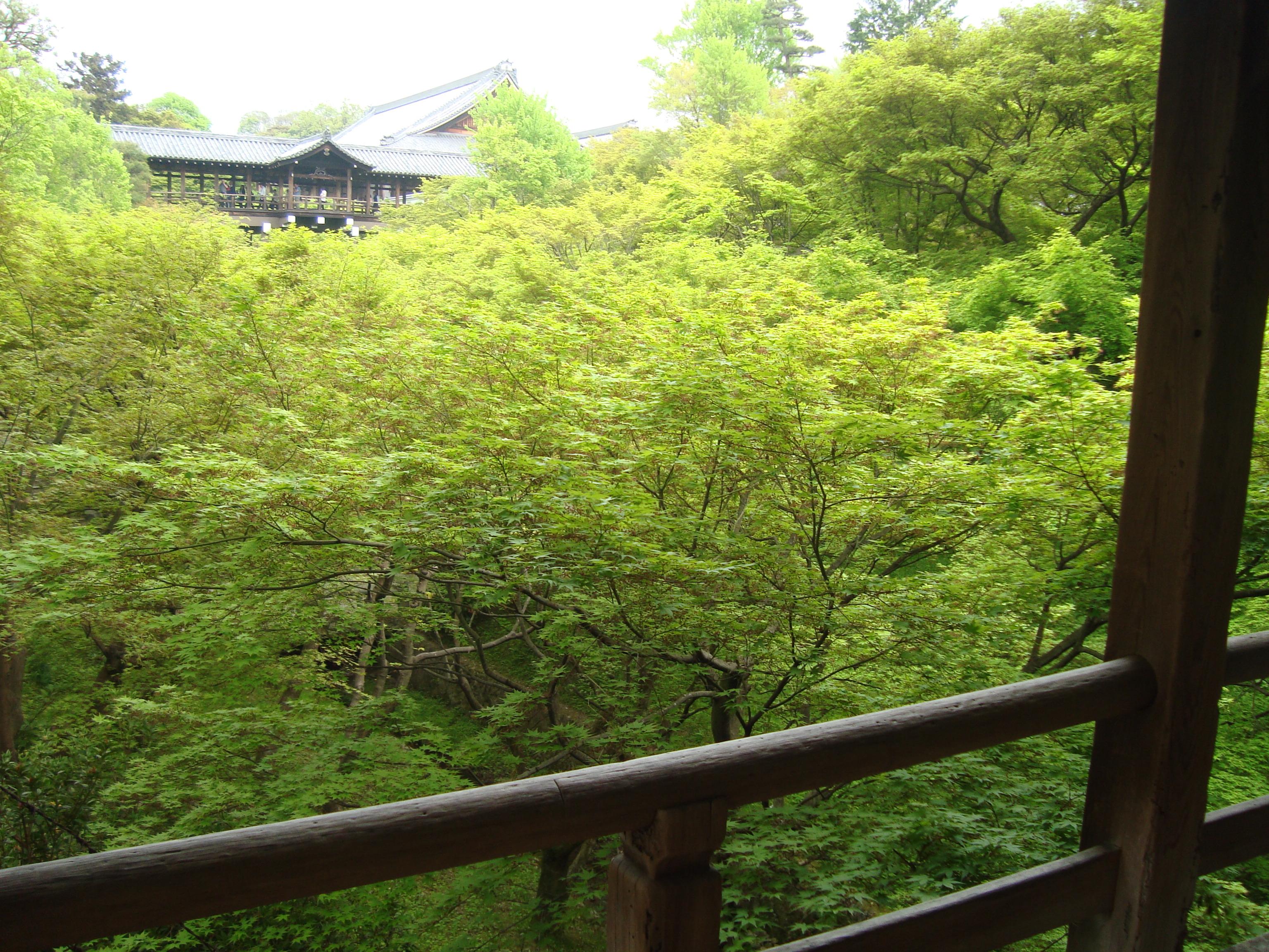 東福寺2臥雲橋.JPG