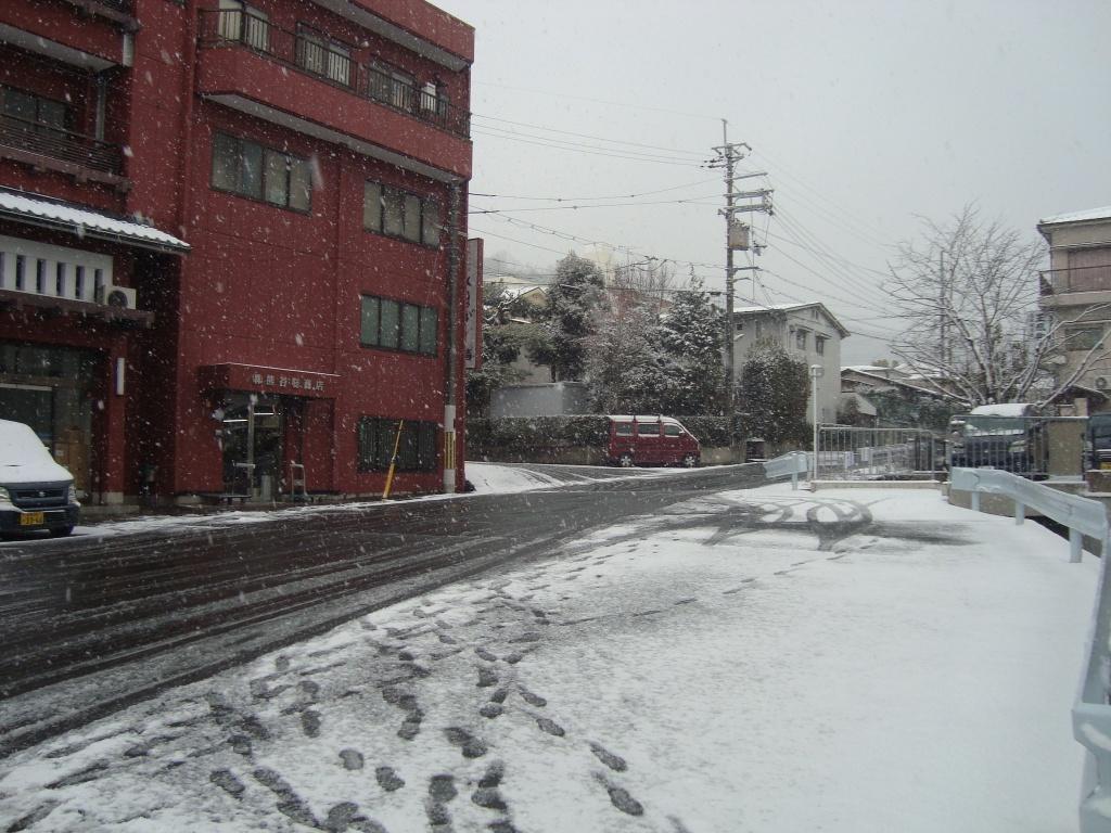 2016年1月雪の日2.JPG